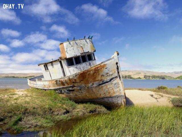 Một con tàu đắm tại Bờ biển Quốc gia Point Reyes ở Inverness, California,