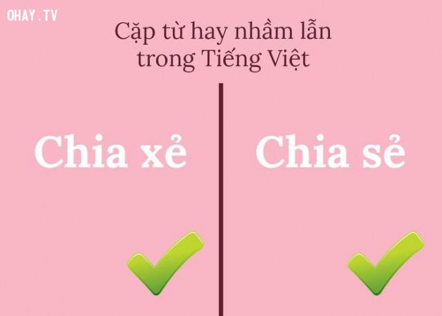 ,chính tả,tiếng Việt