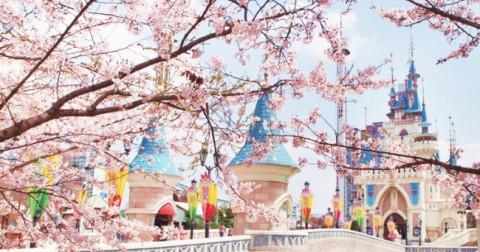 16 lý do khiến bạn nên đi du học Hàn Quốc