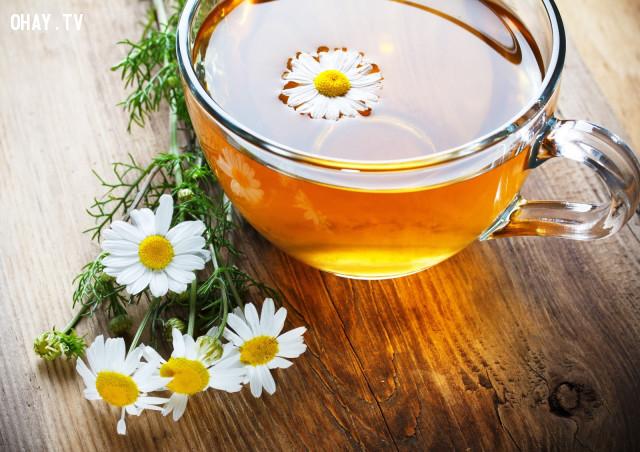 2. Trà hoa cúc,uống trà,trà hoa