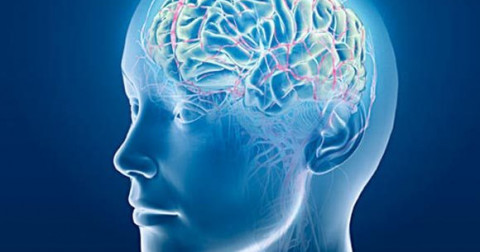 TOP 7 các thực phẩm giúp tăng cường trí nhớ cải thiện chứng hay quên