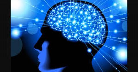 5 cách cải thiện trí nhớ của bạn