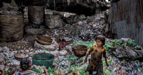 Chiêm ngưỡng những bức ảnh gây chấn động về môi trường của các nhiếp ảnh gia trên khắp thế giới