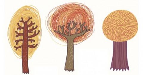 Trắc nghiệm tính cách qua hình ảnh cái cây