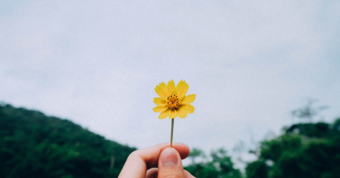 10 điều nên buông bỏ nếu muốn có được hạnh phúc