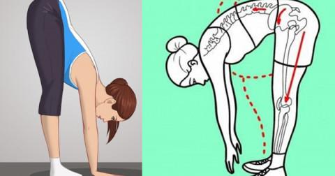 Bài tập sức khỏe giúp cải thiện tính linh hoạt của cơ thể