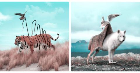 Những bức ảnh động vật siêu thực đẹp đến ngỡ ngàng của Julien Tabet