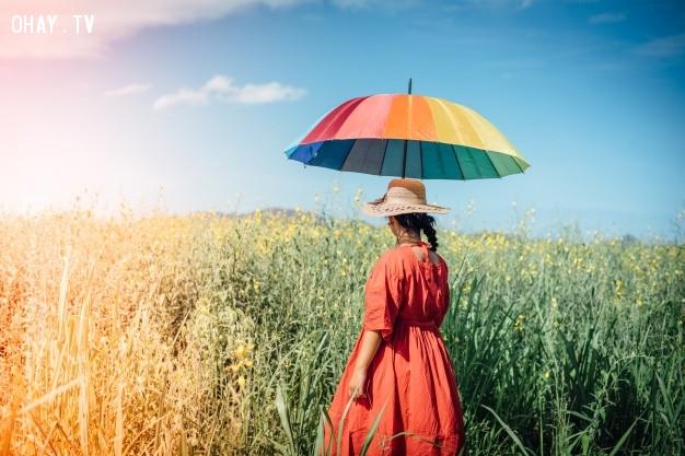 Người khác không có nhiệm vụ yêu mến bạn; đó là trách nhiệm của bạn.  ,sự thật cuộc sống