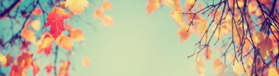 autumna90