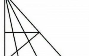 Nếu có thể tìm thấy hơn 18 hình tam giác, chỉ số IQ của bạn cao hơn 120!